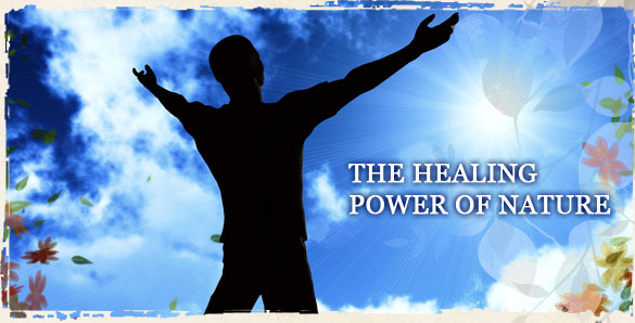 the healing power of the body essay Petition prayer - asking god or a higher power for something  healing presence - prayer can bring a sense of a  mind-body-spirit connection - when prayer.
